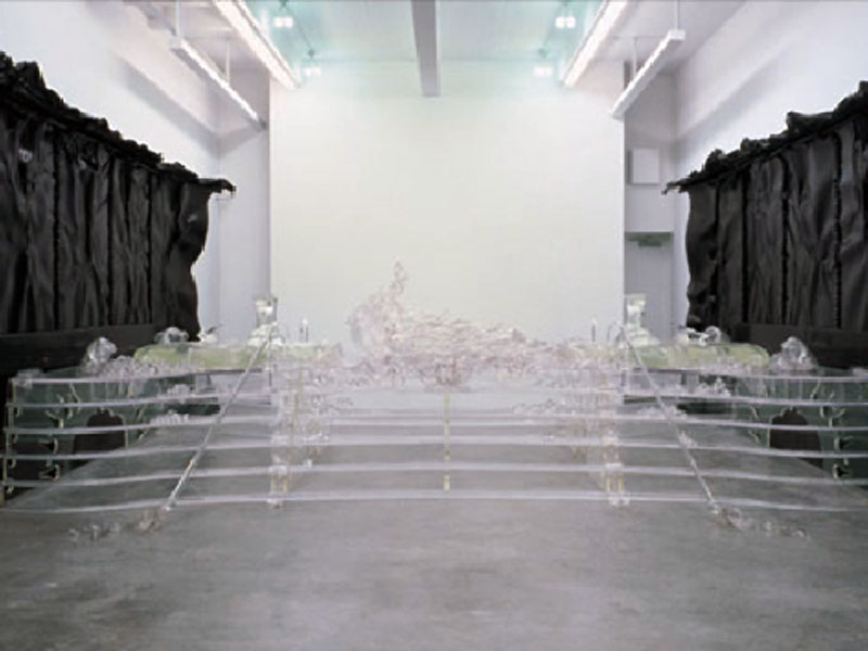 Matthew Barney    /    Barbara Gladstone Gallery, New York